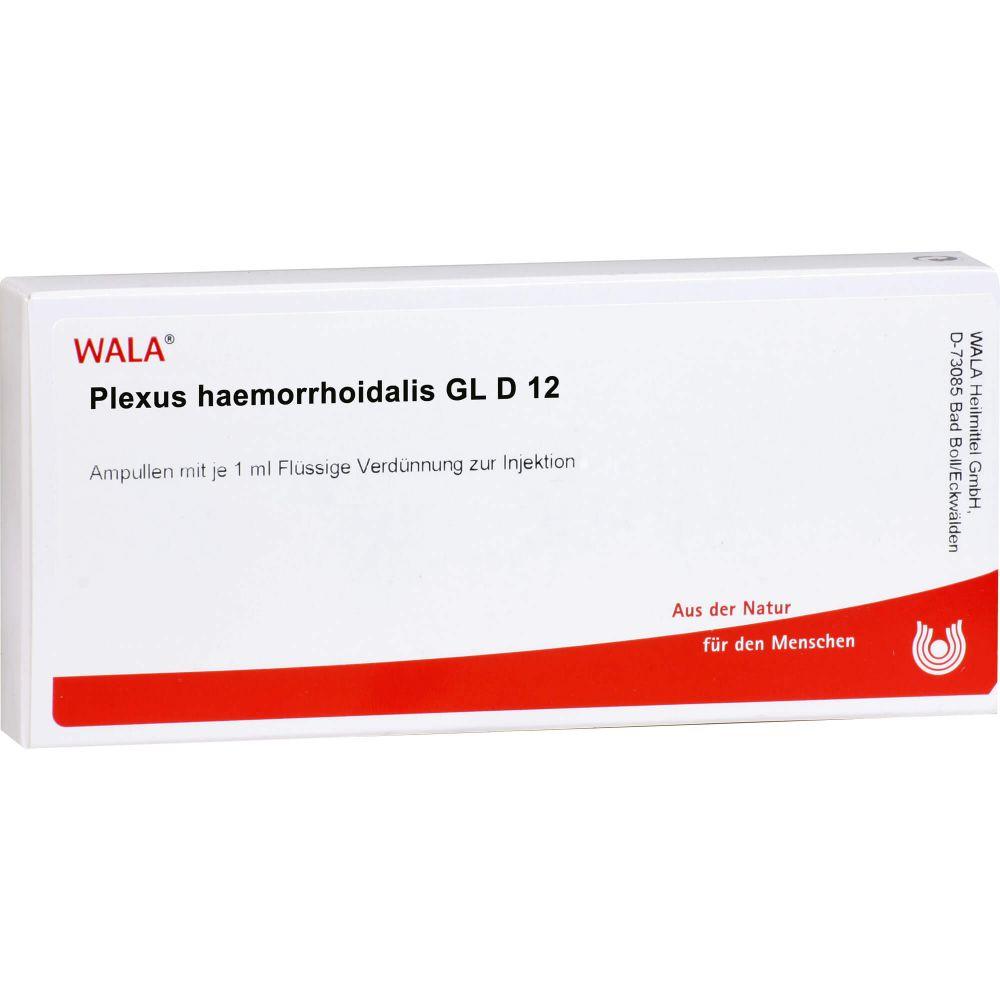 PLEXUS HAEMORRHOIDALIS GL D 12 Ampullen