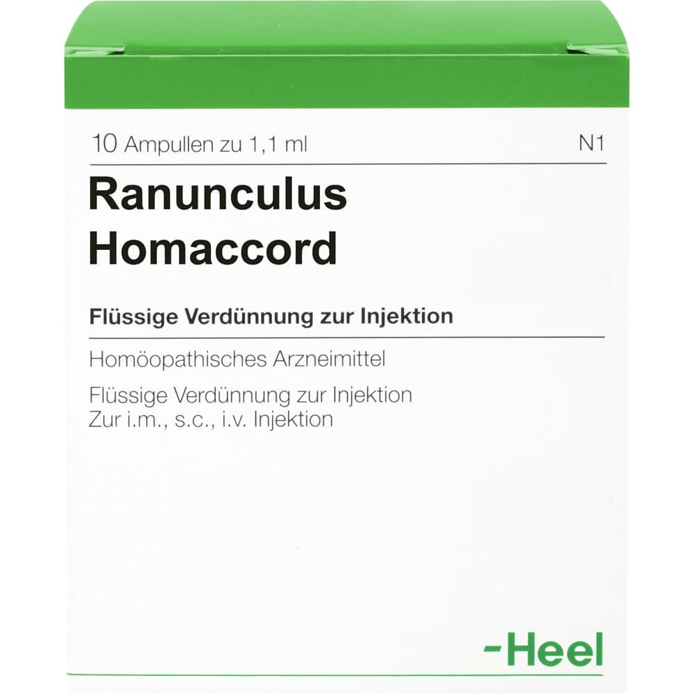RANUNCULUS HOMACCORD Ampullen