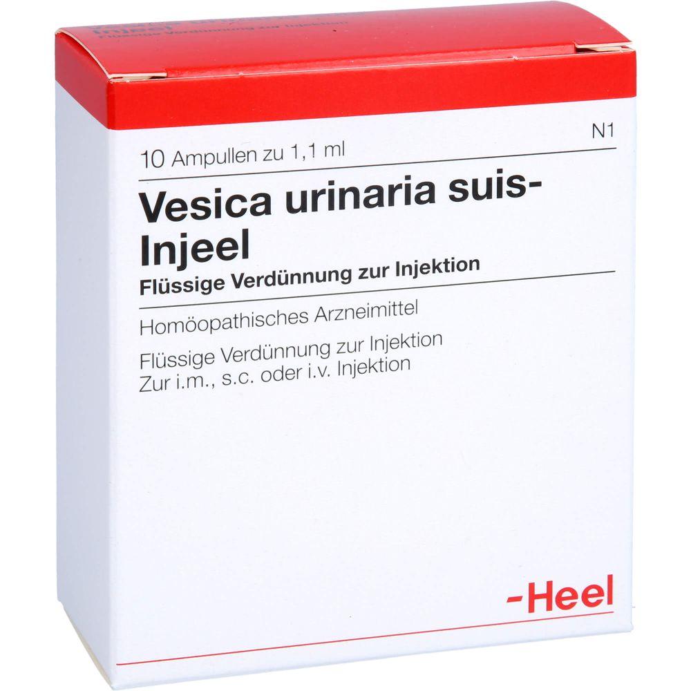 VESICA URINARIA suis-Injeel Ampullen
