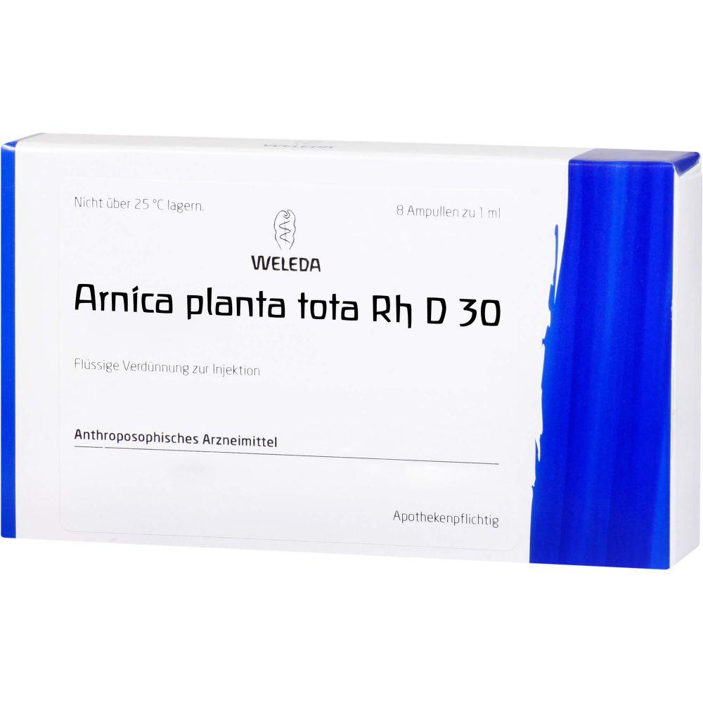 ARNICA PLANTA tota Rh D 30 Ampullen