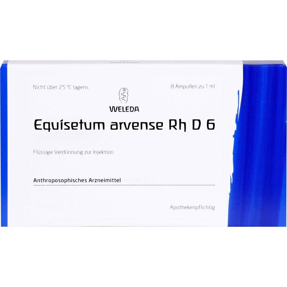 EQUISETUM ARVENSE Rh D 6 Ampullen