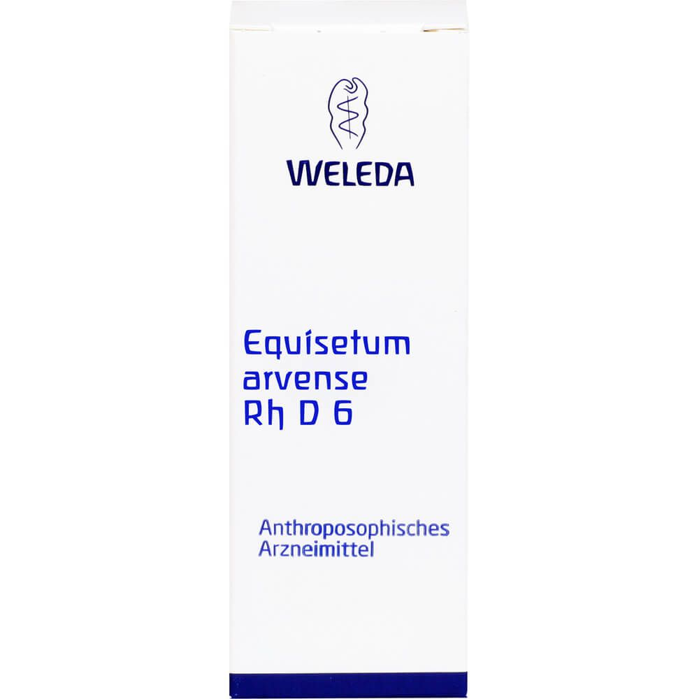 EQUISETUM ARVENSE Rh D 6 Dilution