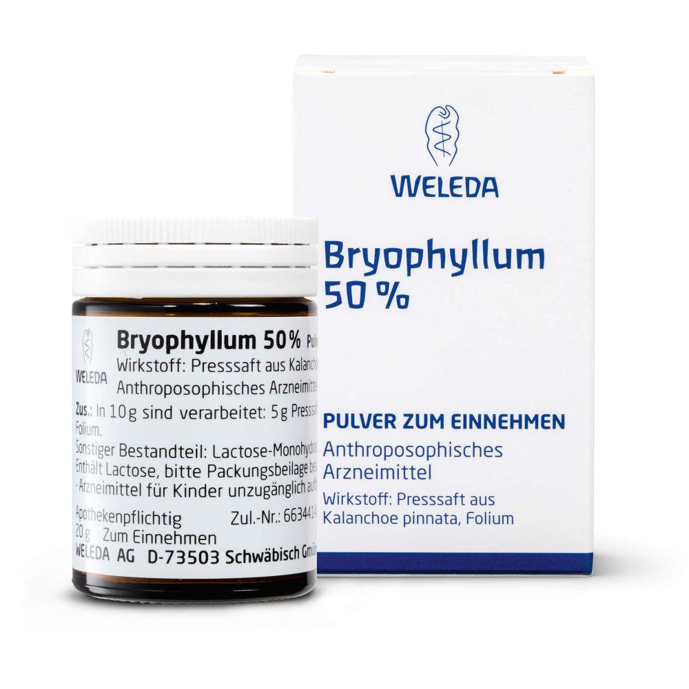 BRYOPHYLLUM 50% Pulver zum Einnehmen