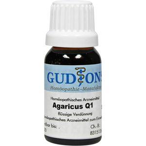 AGARICUS Q 1 Lösung