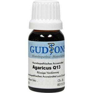 AGARICUS Q 13 Lösung
