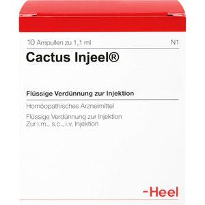 CACTUS INJEEL Ampullen