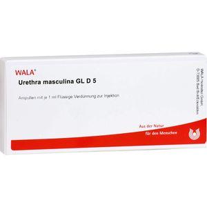 URETHRA masculina GL D 5 Ampullen