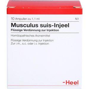 MUSCULUS SUIS Injeel Ampullen