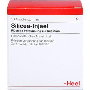 SILICEA INJEEL Ampullen