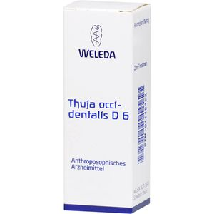 THUJA OCCIDENTALIS D 6 Dilution