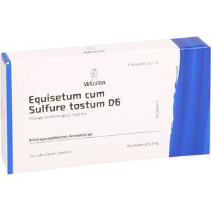 EQUISETUM CUM Sulfure tostum D 6 Ampullen