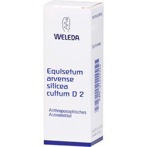 EQUISETUM ARVENSE Silicea cultum D 2 Dilution