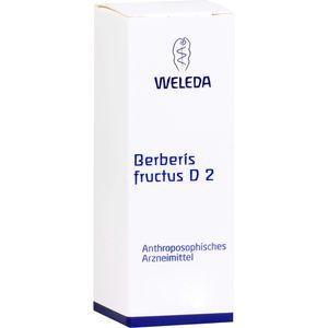 BERBERIS FRUCTUS D 2 Dilution