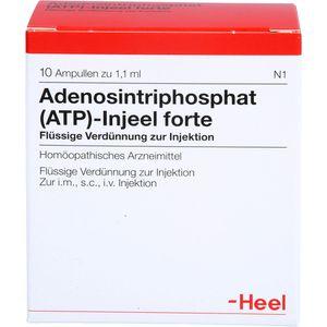ATP Injeel forte Ampullen