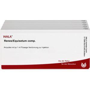 RENES/EQUISETUM comp.Ampullen