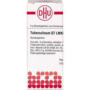 LM TUBERCULINUM GT XII Globuli