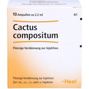 CACTUS COMPOSITUM Ampullen