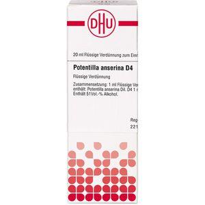 POTENTILLA ANSERINA D 4 Dilution