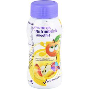 NUTRINIDRINK Smoothie Sommerfrüchte