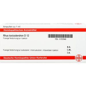 RHUS TOXICODENDRON D 12 Ampullen