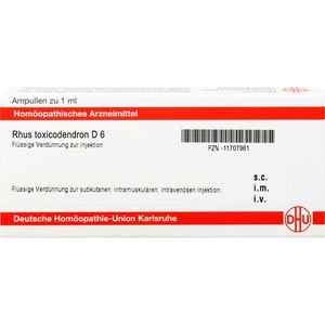 RHUS TOXICODENDRON D 6 Ampullen