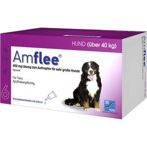 AMFLEE 402 mg Spot-on Lsg.f.sehr gr.Hunde 40-60kg