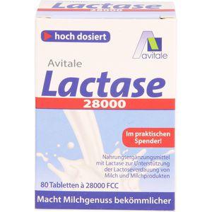 LACTASE 28.000 FCC Tabletten im Spender