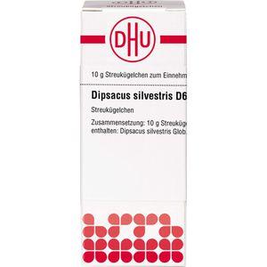 DIPSACUS silvestris D 6 Globuli