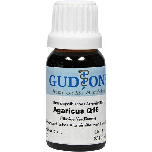 AGARICUS Q 16 Lösung