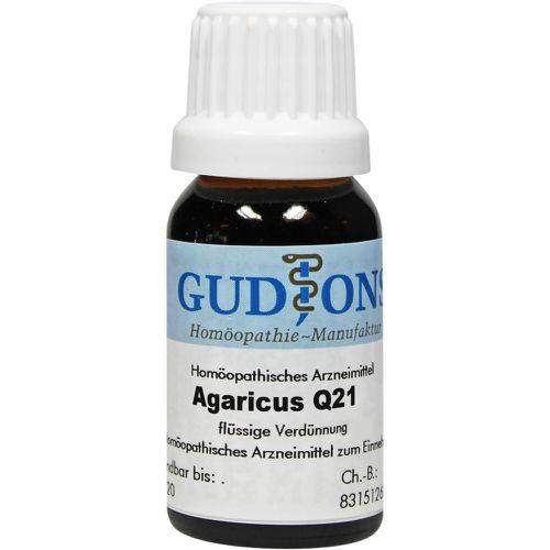 AGARICUS Q 21 Lösung