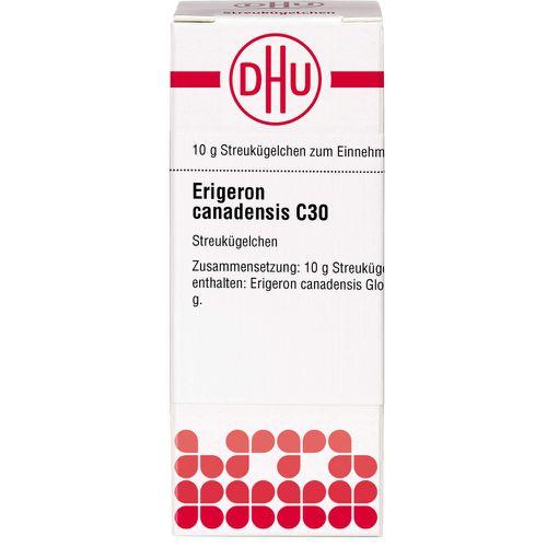 ERIGERON CANADENSIS C 30 Globuli