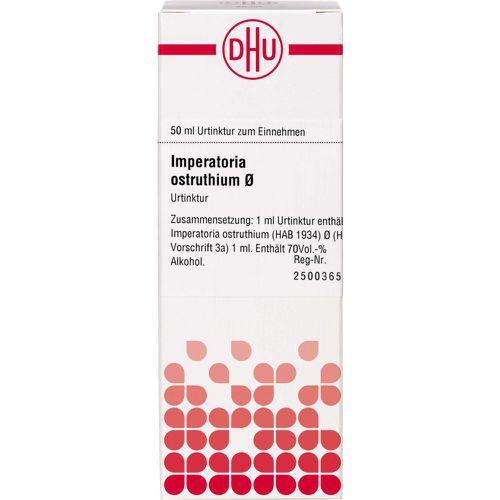 IMPERATORIA ostruthium Urtinktur