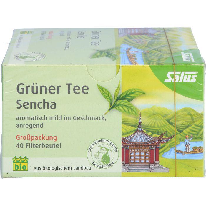 GRÜNER TEE Bio Salus Filterbeutel Großpackung