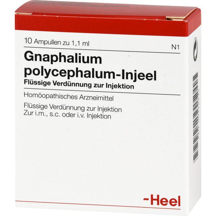 GNAPHALIUM POLYCEPHALUM INJEEL Ampullen